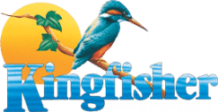 Kingfisher Sign Up Code