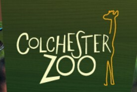 Colchester Zoo Student Discount Code